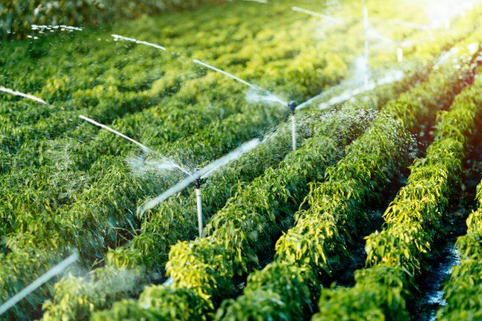 farm irrigation system producer kansas